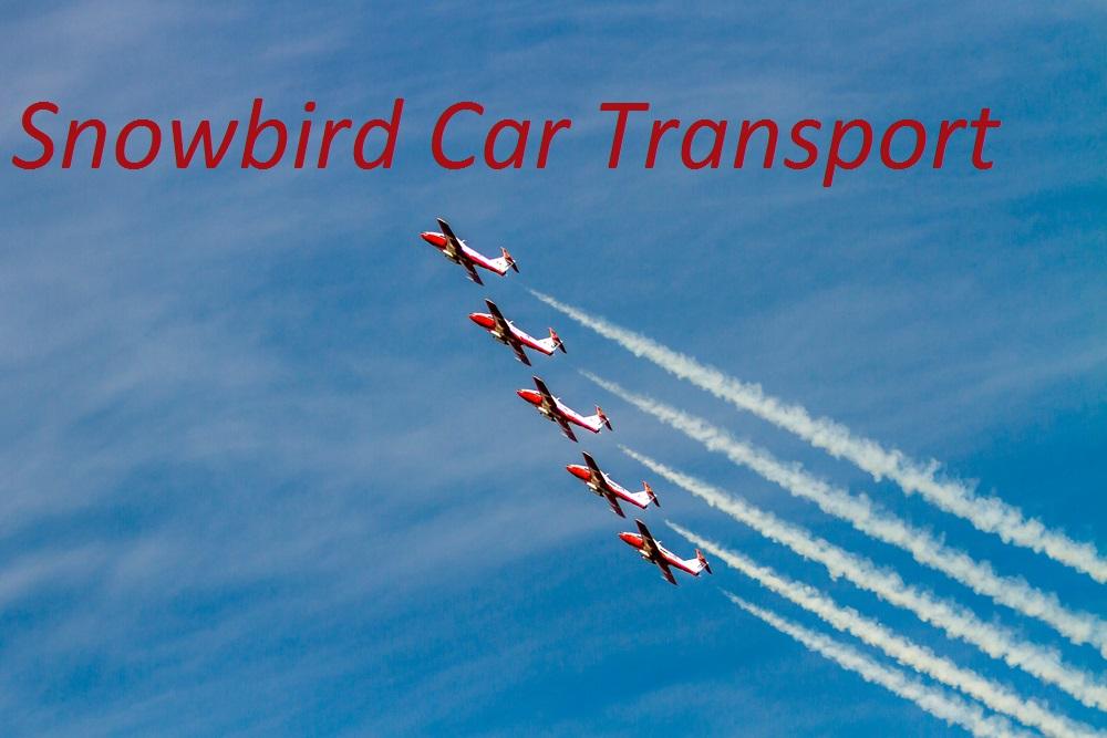 Snowbird Auto Transport